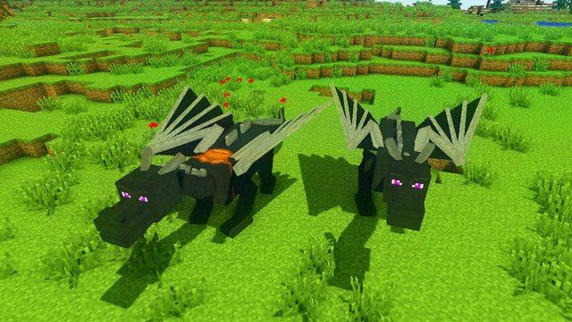 Dragon Mounts Mod 3