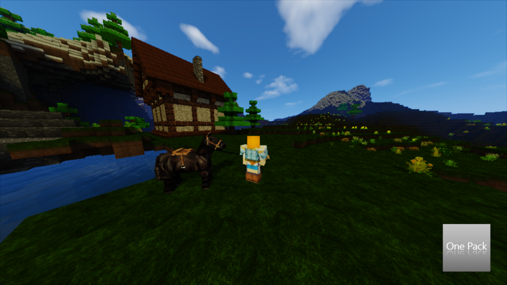 One Pack Resource Pack 7
