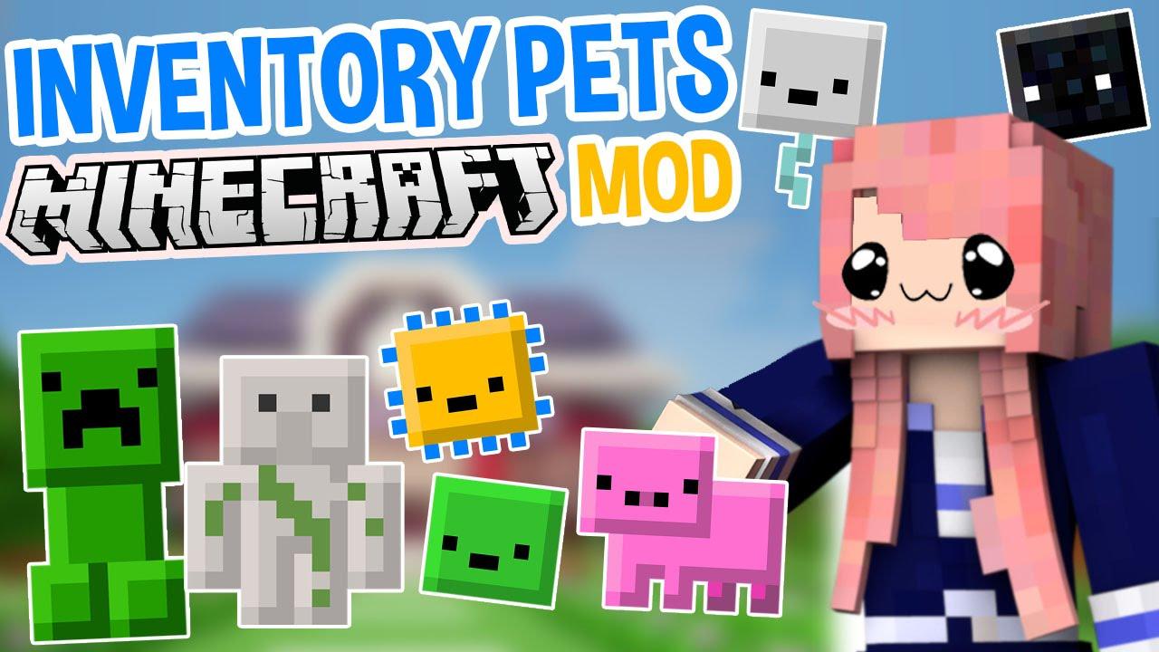 Inventory Pets Mod 3