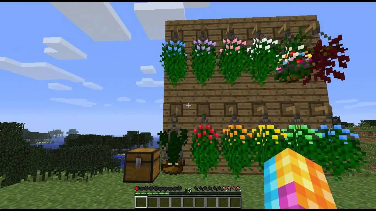 Plants Mod 1