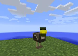 Duck Craft Mod 1