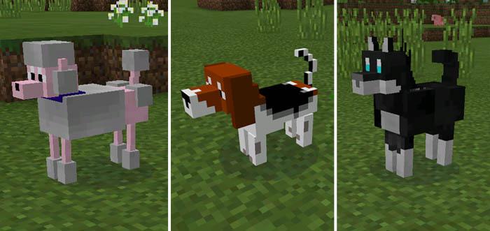 More Pets Mod